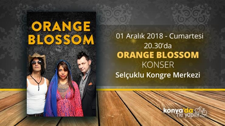 Konya'da Orange Blossom Konseri